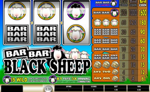 Bar Bar Black Sheep Image