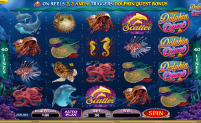 Dolphin Quest Image