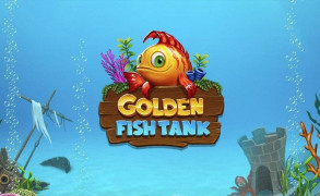 Golden Fish Tank Image