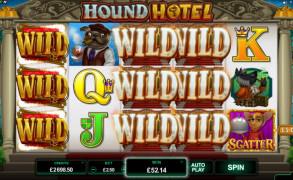 Hound Hotel Image