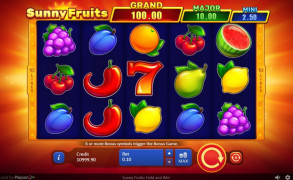 Sunny Fruits: Hold and Win Image